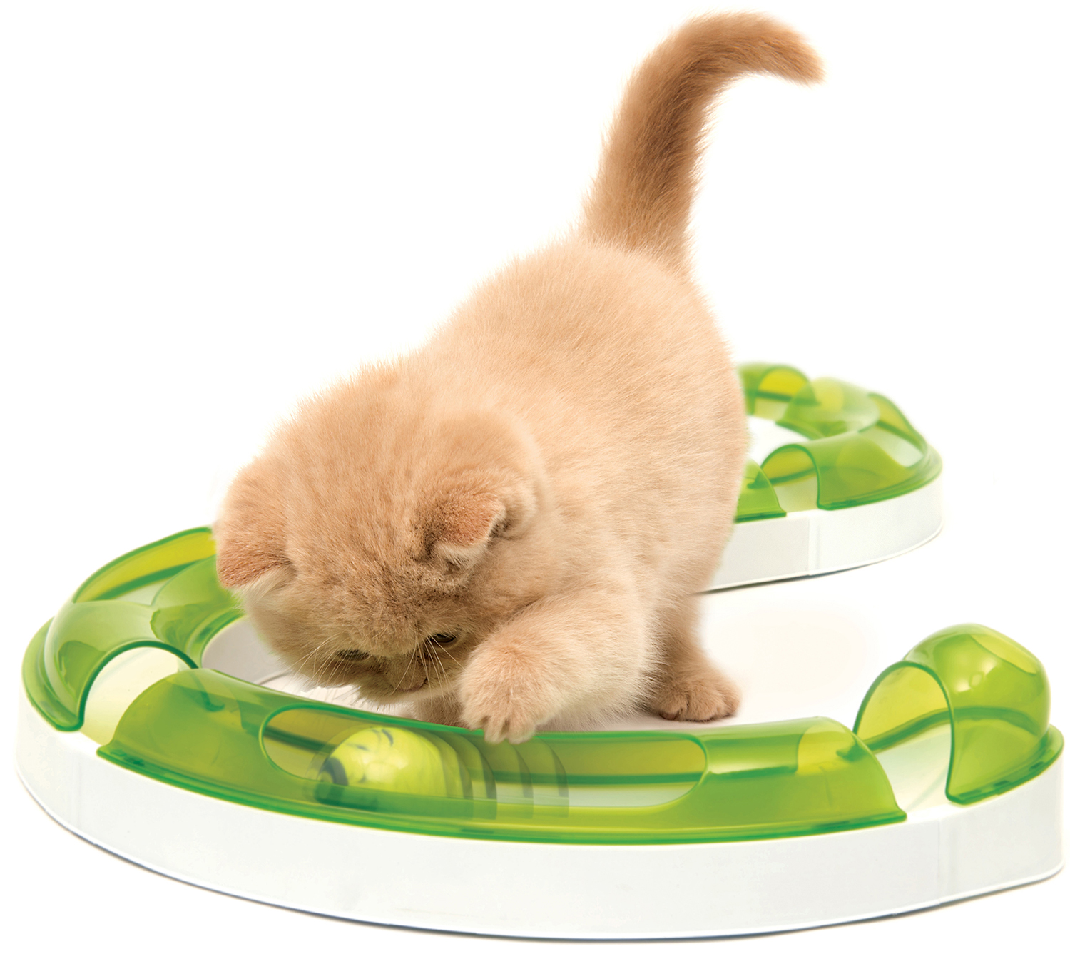 Catit spielschiene play spielschienen spiel for Aquaristik katalog