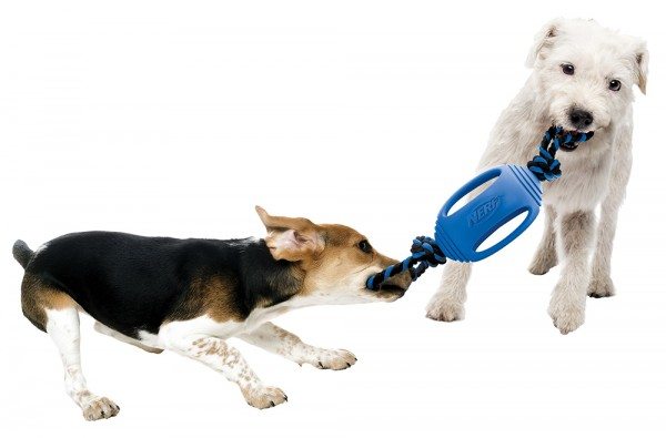 NERF Dog Spielzeug Gummi-Tau, 2er-Set