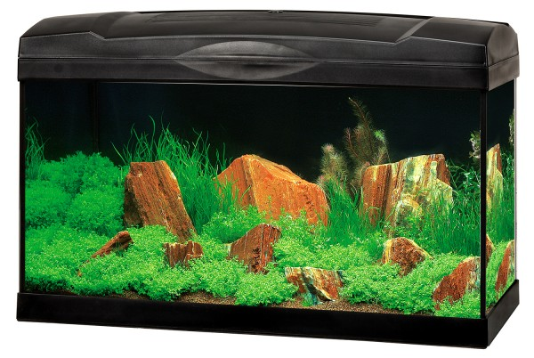 Marina Complete 54 LED Aquarium-Set