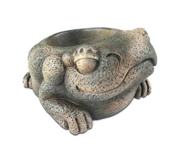 Exo Terra Aztec Frog
