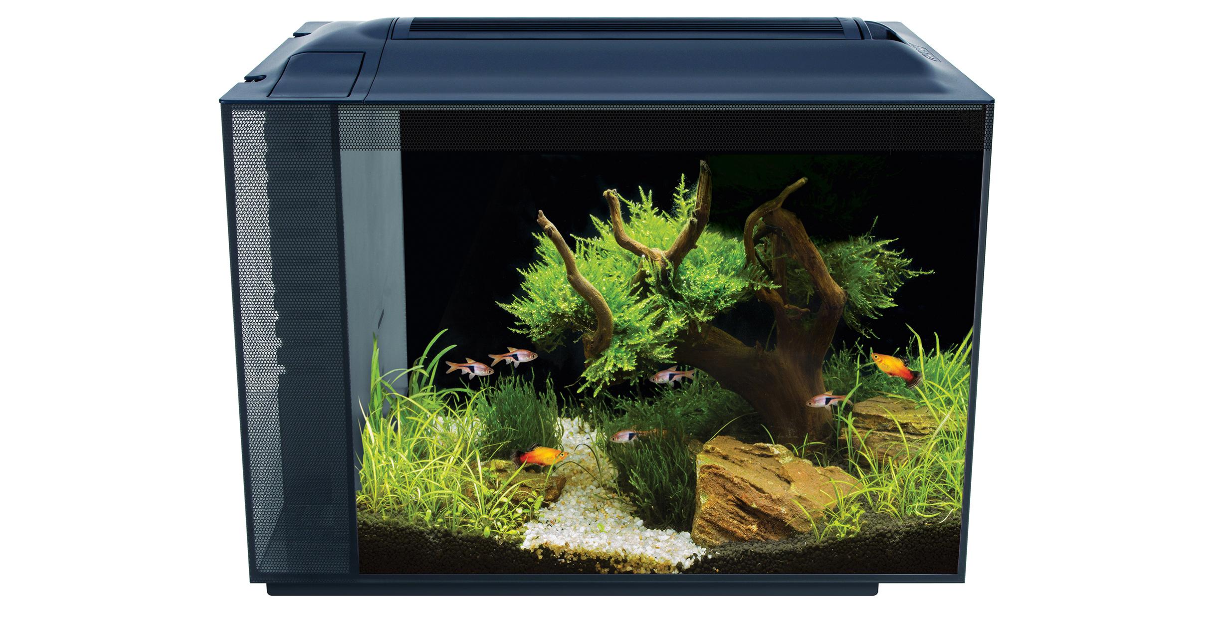 fluval spec xv 60 liter tisch aquarien aquarien aquaristik hagen service deutsch. Black Bedroom Furniture Sets. Home Design Ideas