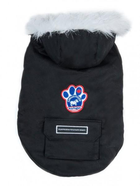 Canada Pooch Winter Wildnis Jacke, schwarz