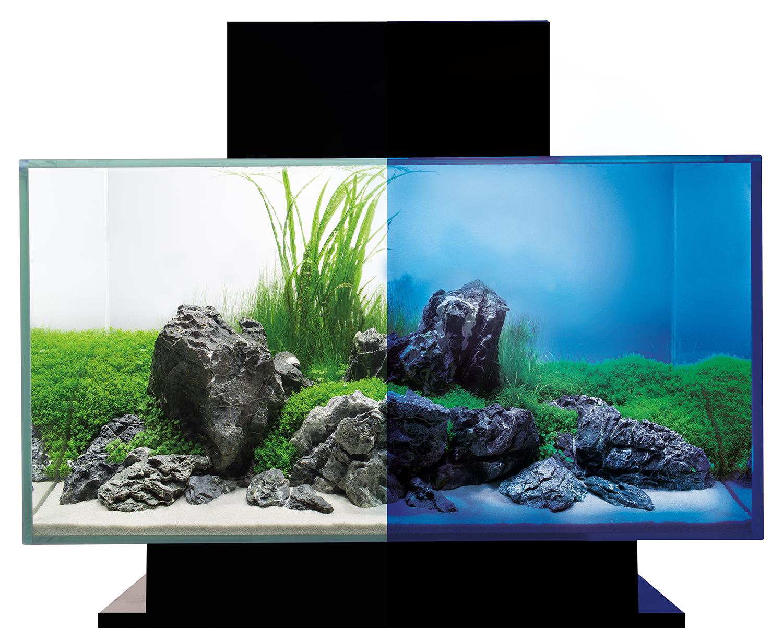 aquarium fluval edge 2 0 aquarium 46 liter mit led beleuchtungssystem ebay. Black Bedroom Furniture Sets. Home Design Ideas