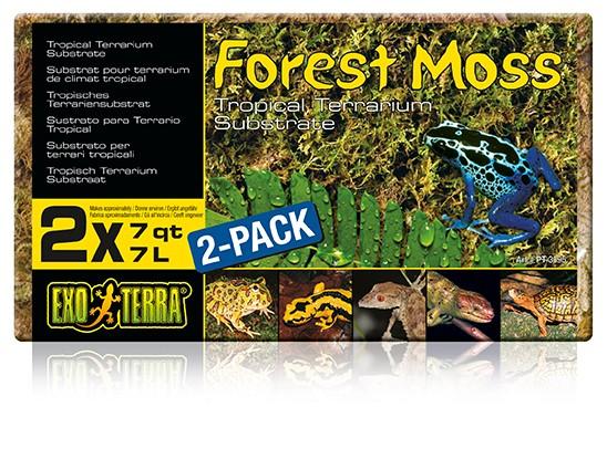 Exo Terra Forest Moss, 2er-Set