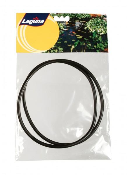 O-Ringe für Filterdeckel
