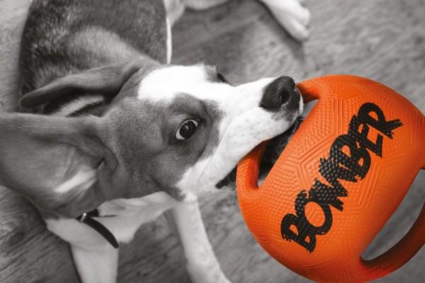 """Zeus """"Ball"""""""